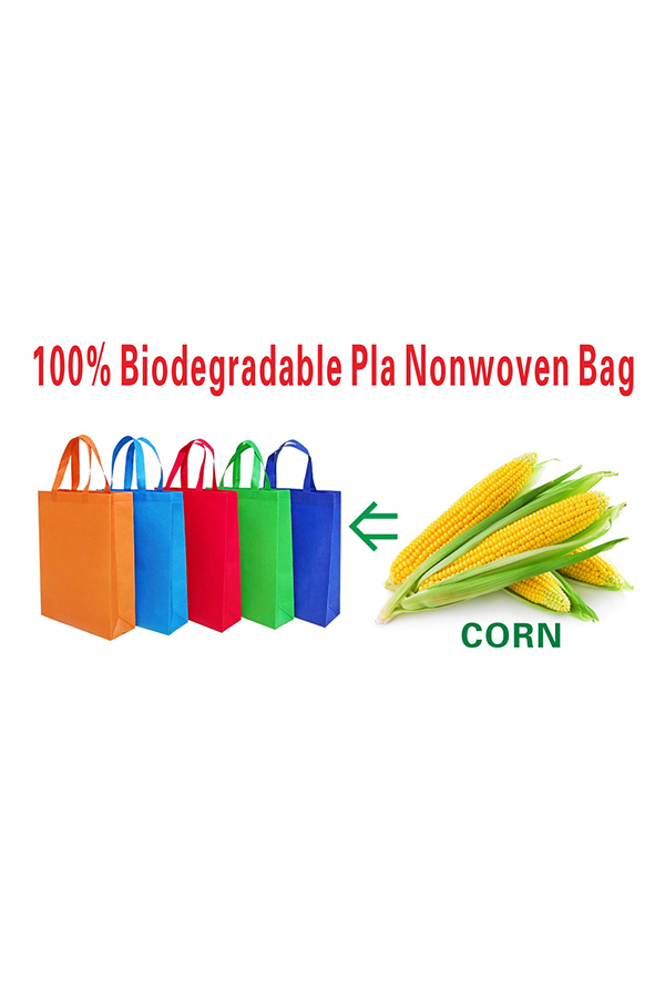 PLA  Foldable Nonwoven Bag